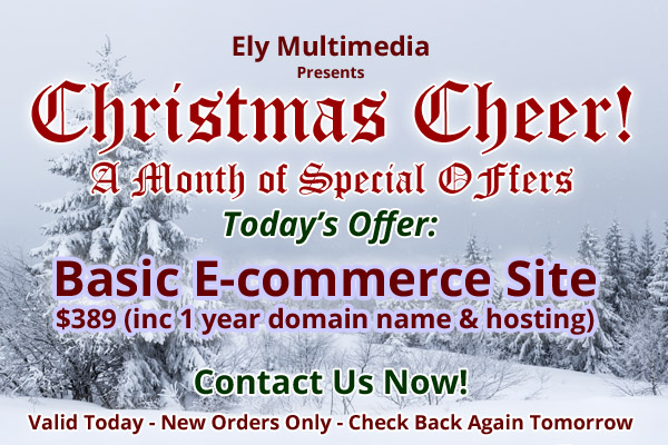Christmas Promotion - Contact Us Now!